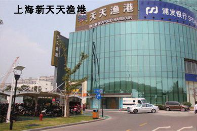شنغهاي X في ميناء الصيد كل يوم
